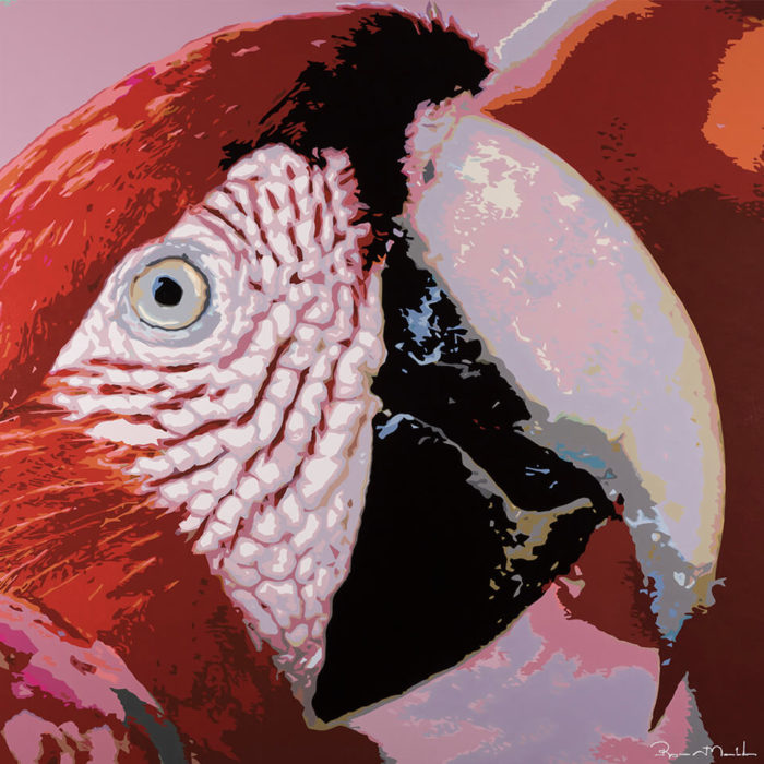 The Red Macaw